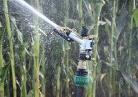 Raingun Sprinklers