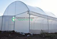 Metallic Greenhouse